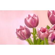 "6 TB Wester Digital 3.5"" Gold SATAIII"