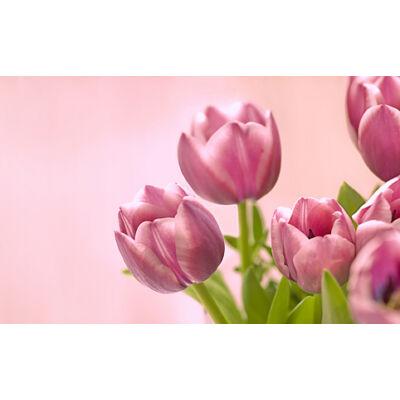 "6TB WD 3.5"" Gold SATAIII winchester"